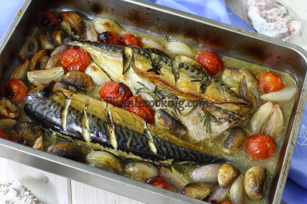 Mackerel with wine and tomatoes5.JPG