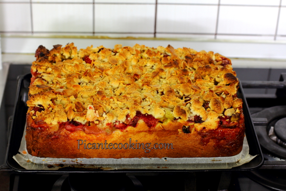 strawberry_rhubarb_yeast_cake8.JPG