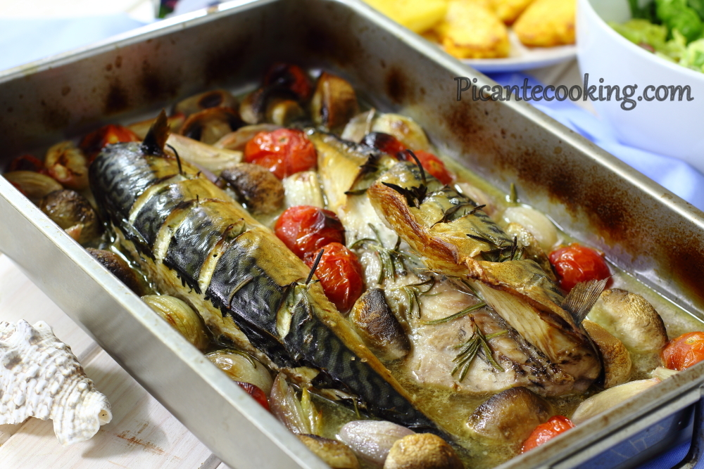 Mackerel with wine and tomatoes6.JPG